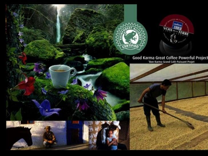 Connue depuis toujours pour son expérience, sa passion et son innovation, Lavazza est leader dans le café espresso. Ces qu...