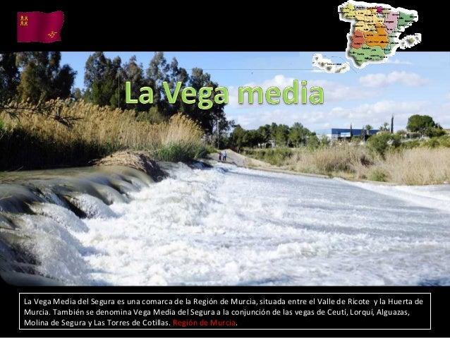 La Vega Media del Segura es una comarca de la Región de Murcia, situada entre el Valle de Ricote y la Huerta deMurcia. Tam...