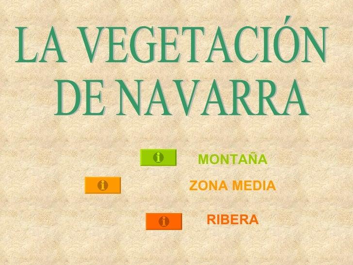 external image la-vegetacin-de-navarra-1-728.jpg?cb=1255718680