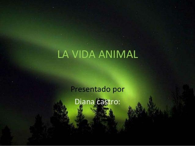 LA VIDA ANIMAL Presentado por Diana castro: