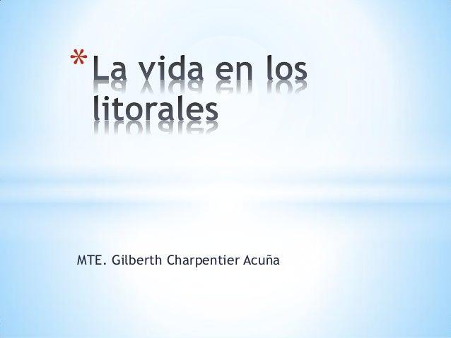 MTE. Gilberth Charpentier Acuña *