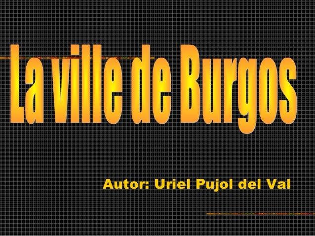 Autor: Uriel Pujol del Val