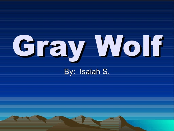 Gray Wolf By:  Isaiah S.