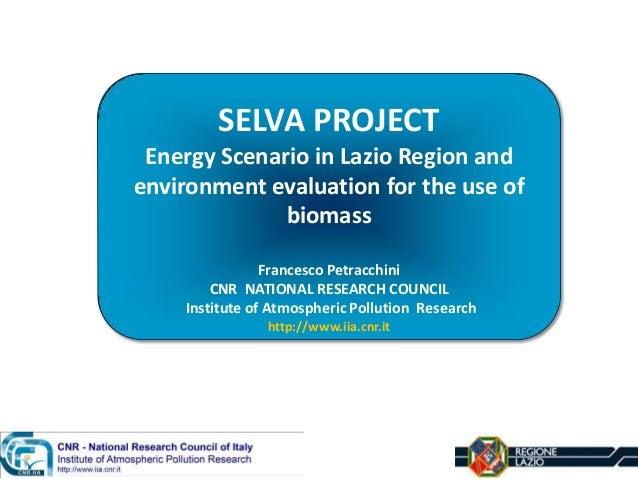 SELVA PROJECT Energy Scenario in Lazio Region and environment evaluation for the use of biomass Francesco Petracchini CNR ...