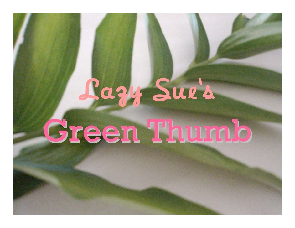 Lazy Sue's Green Thumb