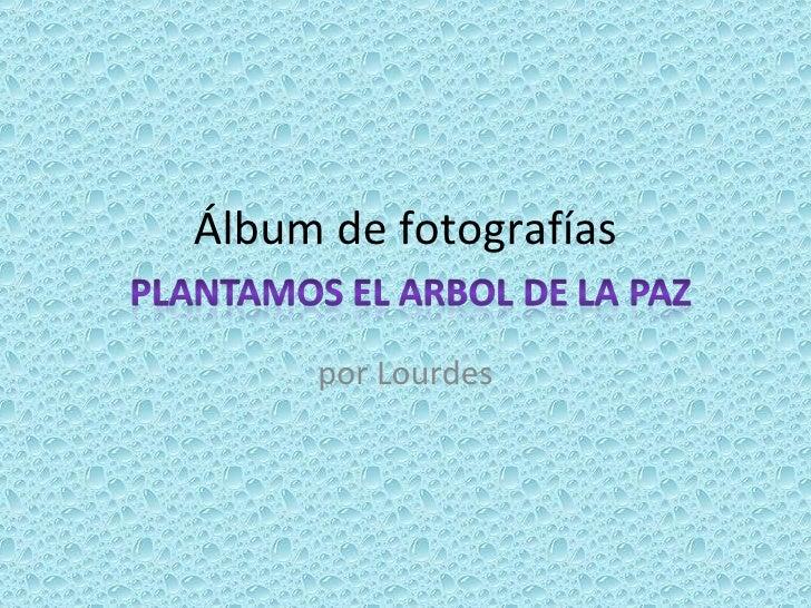 Álbum de fotografías por Lourdes