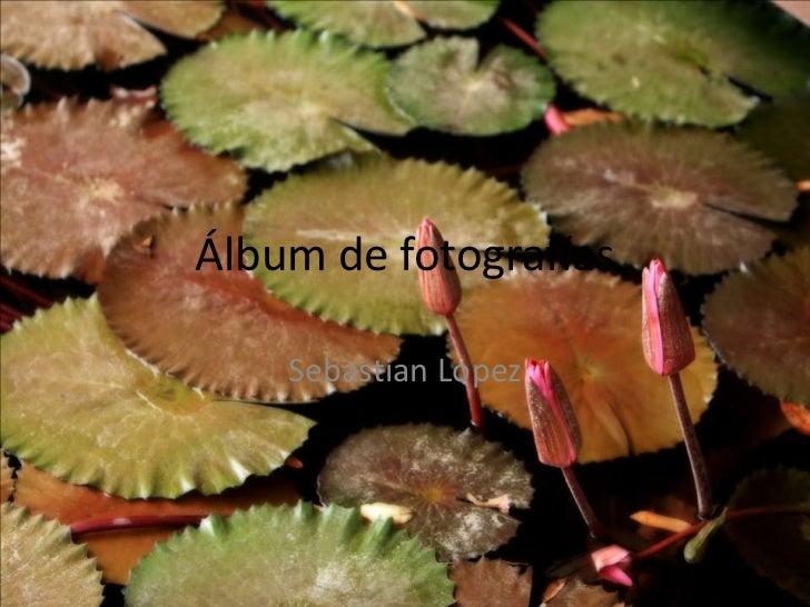 Álbum de fotografías    Sebastian Lopez