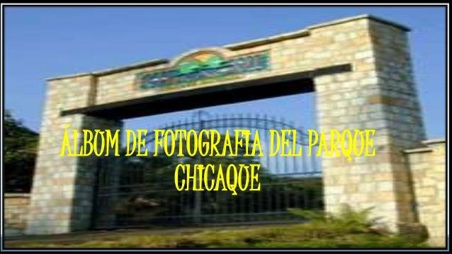 ÁLBUM DE FOTOGRAFIA DEL PARQUE CHICAQUE