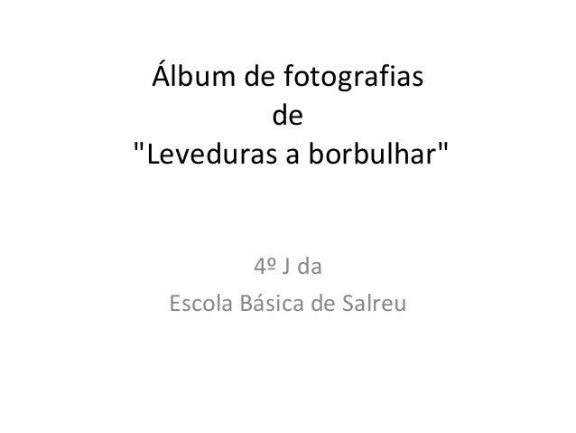 """Álbum de fotografias de """"Leveduras a borbulhar"""" 4º J da Escola Básica de Salreu"""
