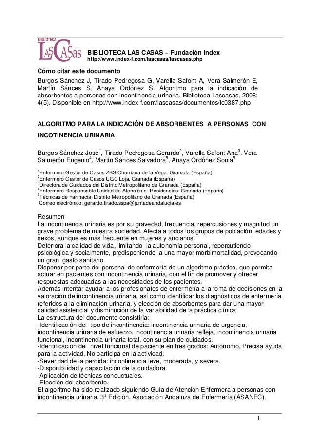 1 BIBLIOTECA LAS CASAS – Fundación Index http://www.index-f.com/lascasas/lascasas.php Cómo citar este documento Burgos Sán...