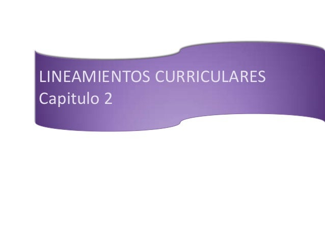 LINEAMIENTOS CURRICULARES Capitulo 2