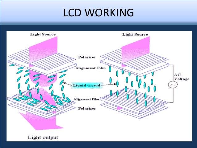 liquid crystal display term paper