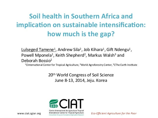 Soil Health in Southern Africa and implications on sustainable intensification 2014 L Desta et al