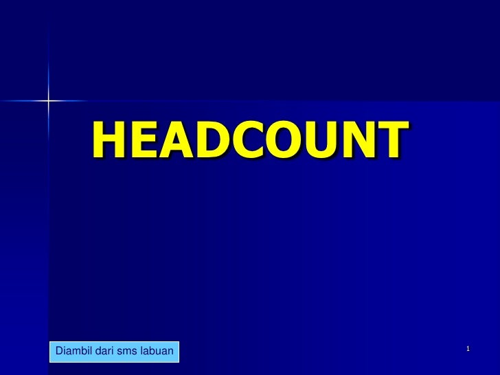 Ldp headcount 12 feb 2011