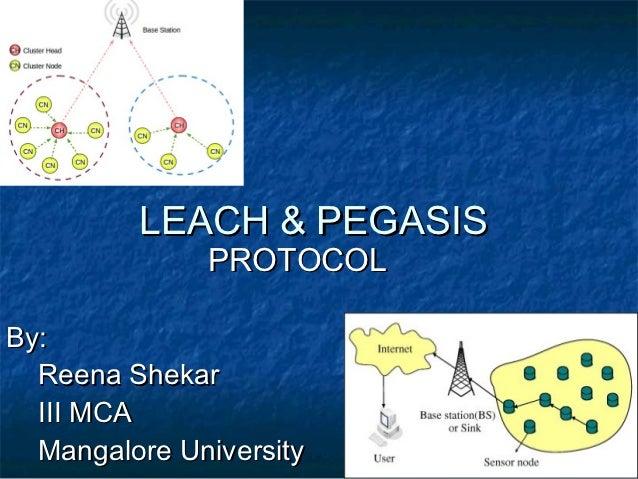 Leach & Pegasis