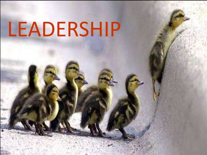 Leadership concepts and theories
