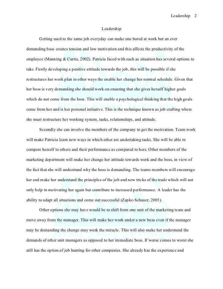 sample essay for leadership skills
