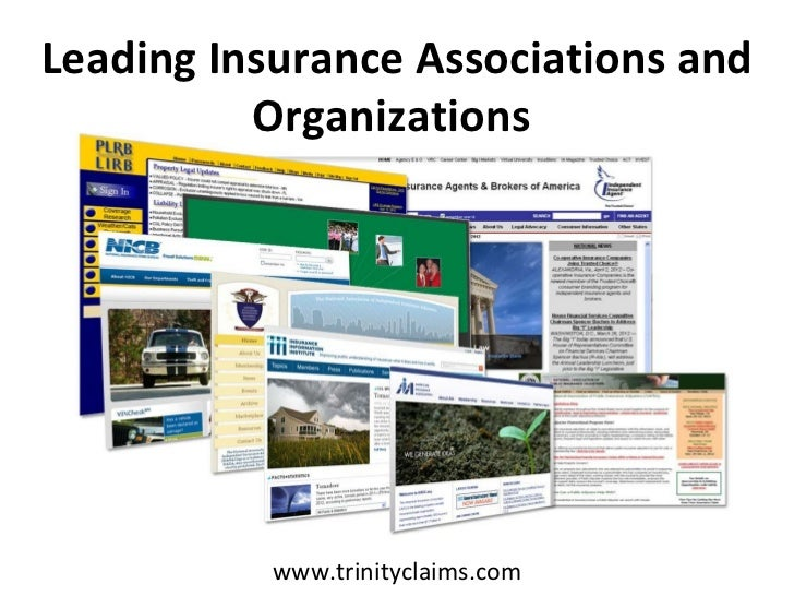 Leading Insurance Associations and Organizations