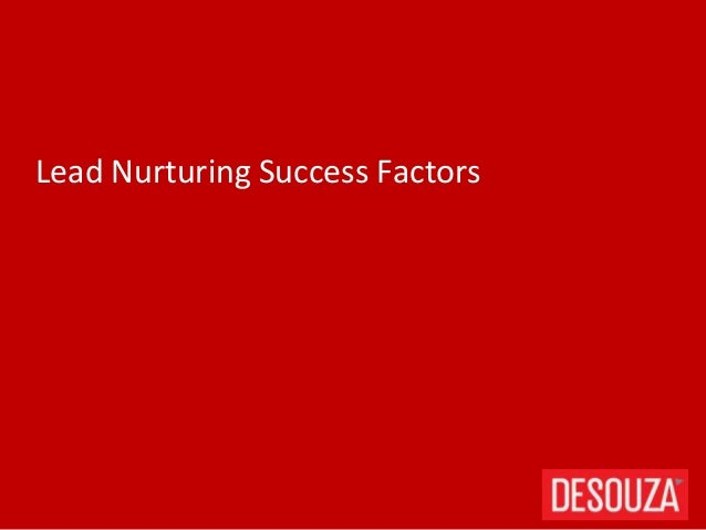 Lead Nurturing Success Factors