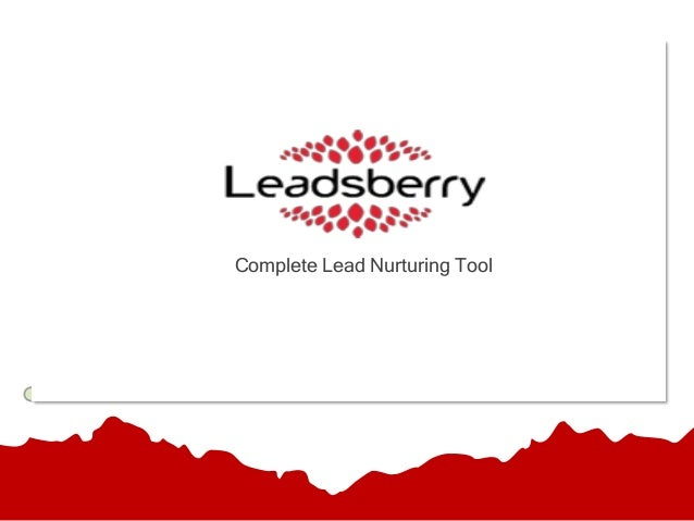 Leadsberry Product Presentation