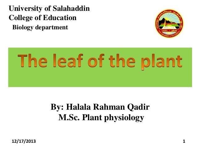 University of Salahaddin College of Education Biology department  By: Halala Rahman Qadir M.Sc. Plant physiology 12/17/201...