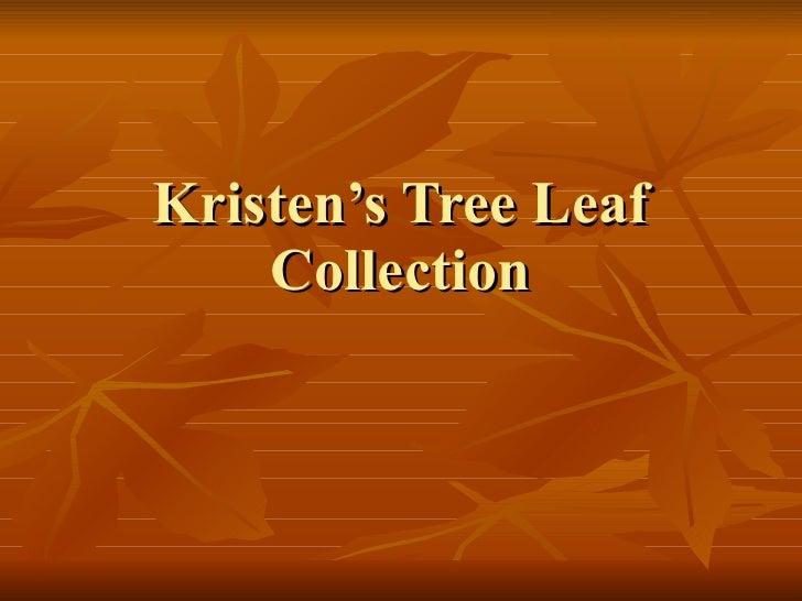 Kristen's Tree Leaf Collection