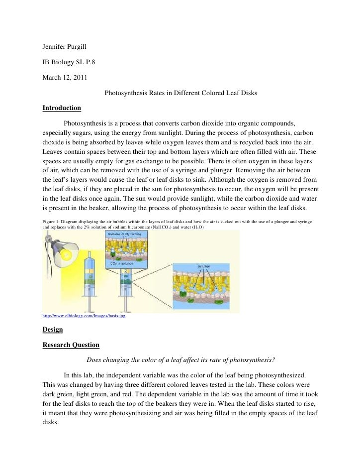 Jennifer PurgillIB Biology SL P.8March 12, 2011                                 Photosynthesis Rates in Different Colored ...
