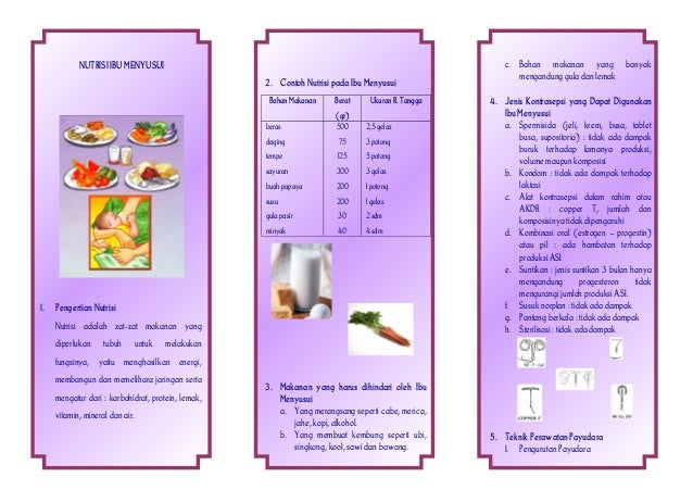 Gambar Nutrisi Ibu Menyusui Nutrisi Ibu Menyusui 2