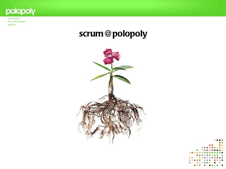SCRUM at Polopoly - or building a lean culture