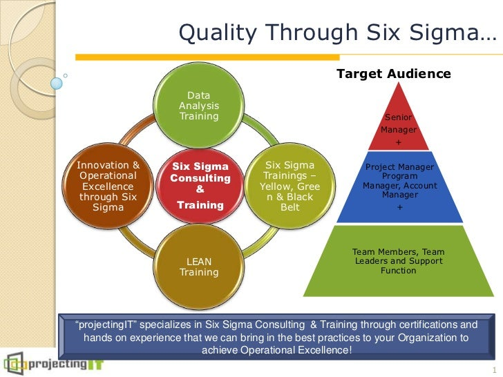 Quality Through Six Sigma…                                                         Target Audience                        ...