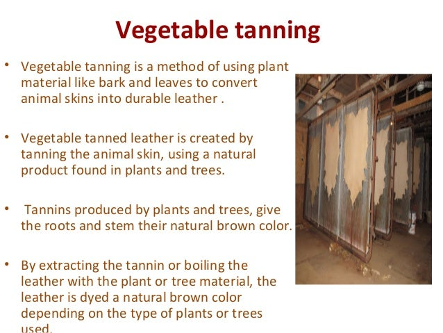 environmental impact of leather tanning industry Today, the leather tanning industry stands out as perhaps the most productive byproduct industry in the world it is hard to imagine the environmental impact of the additional synthetic product manufacturing which would be required to replace all of the current applications for leather, suede and shearling.
