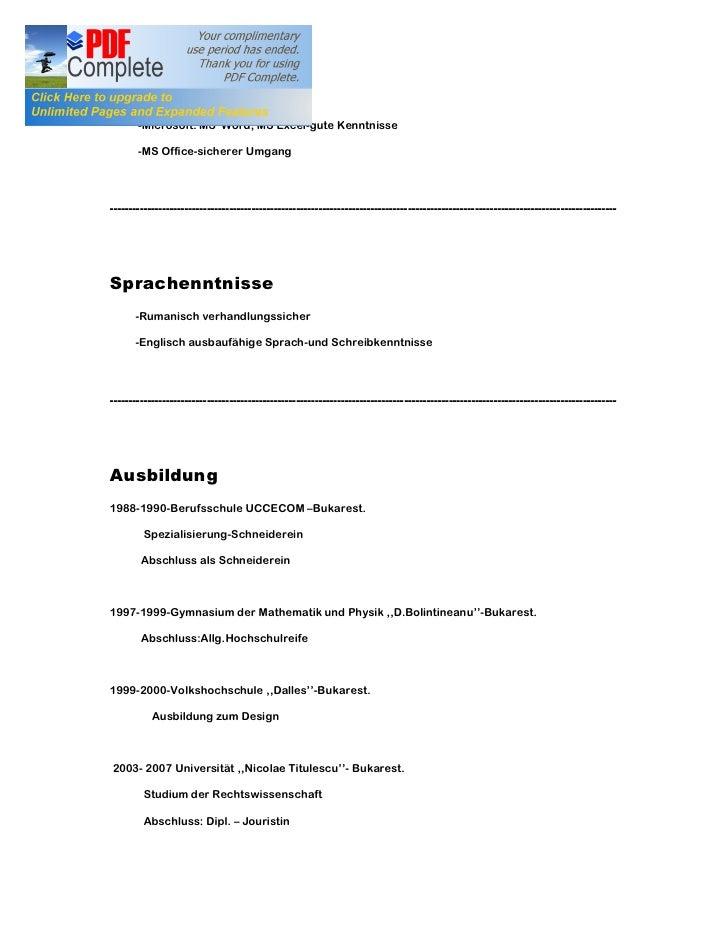 lebenslauf pdf