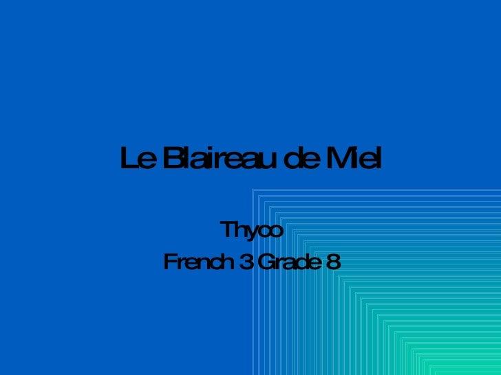 Le Blaireau de Miel Thyco French 3 Grade 8