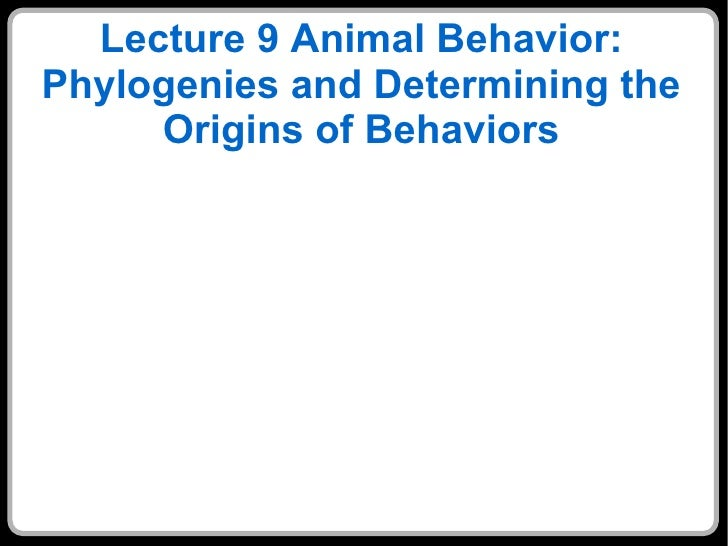 Lecture 9 Animal Behavior: Phylogenies and Determining the Origins of Behaviors