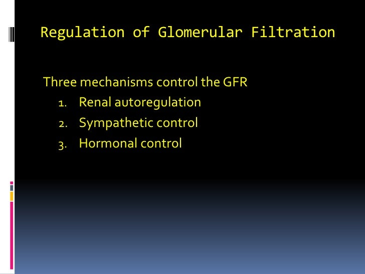 Regulation of Glomerular Filtration<br />Three mechanisms control the GFR  <br />Renal autoregulation <br />Sympathetic co...