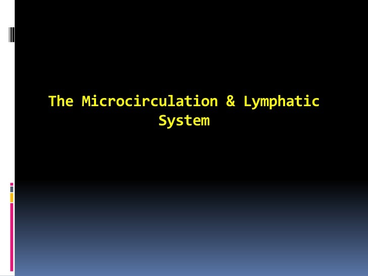 The Microcirculation & Lymphatic System<br />