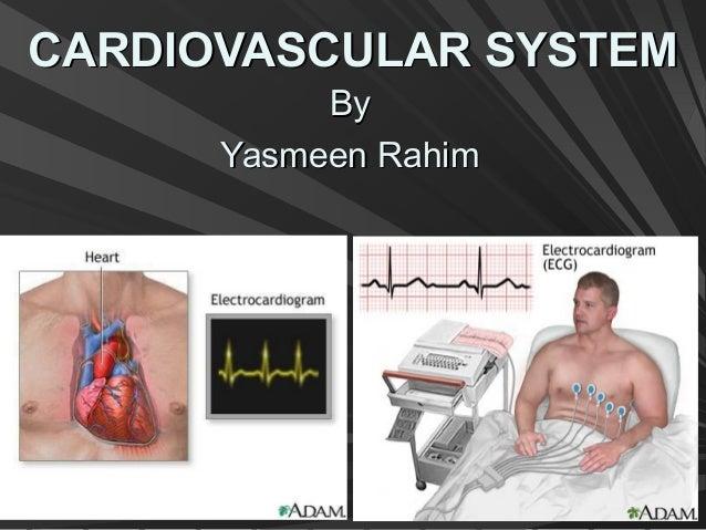 CARDIOVASCULAR SYSTEMCARDIOVASCULAR SYSTEM ByBy Yasmeen RahimYasmeen Rahim