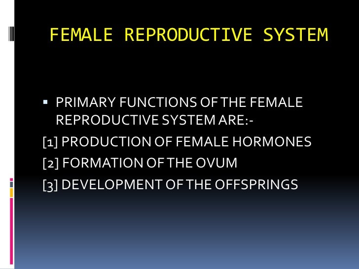 FEMALE REPRODUCTIVE SYSTEM<br />PRIMARY FUNCTIONS OF THE FEMALE REPRODUCTIVE SYSTEM ARE:-<br />[1] PRODUCTION OF FEMALE HO...