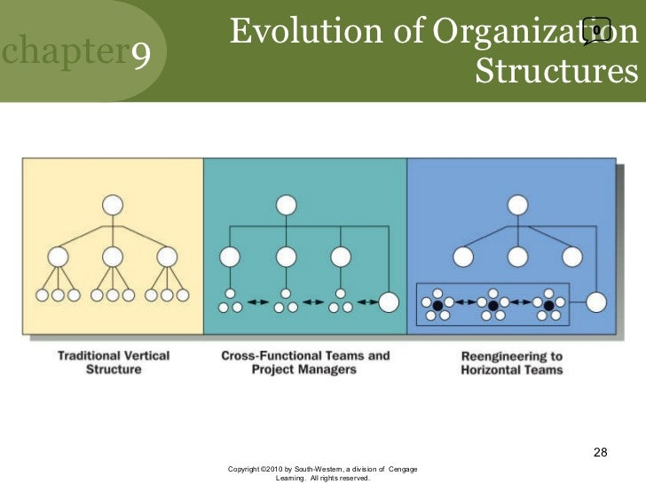evolution of organizational structure micah