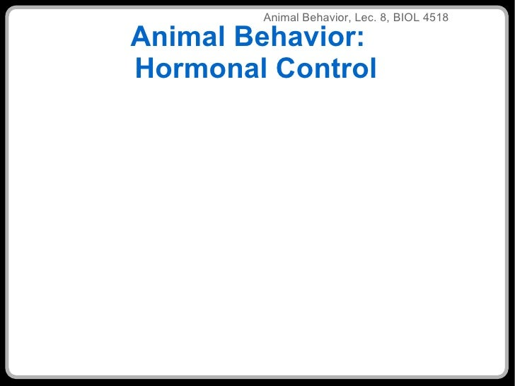 Animal Behavior:  Hormonal Control ANIMALEHAVIOR LEC 3 ANIMAL BE ANIM Animal Behavior, Lec. 8, BIOL 4518