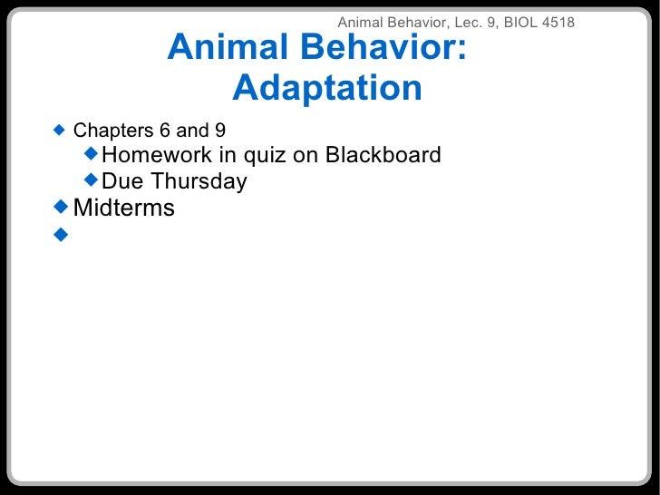 Lec9 Adaptation