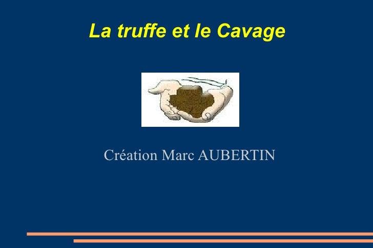 La truffe et le Cavage Création Marc AUBERTIN