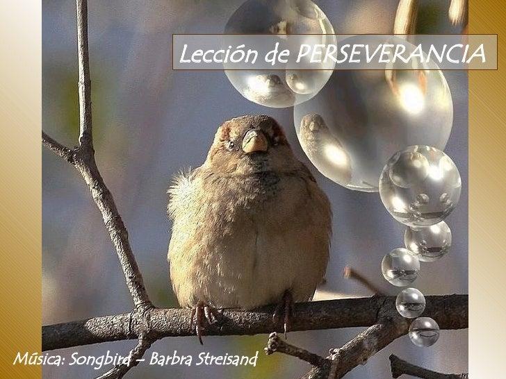 Lección de PERSEVERANCIA  Música: Songbird – Barbra Streisand