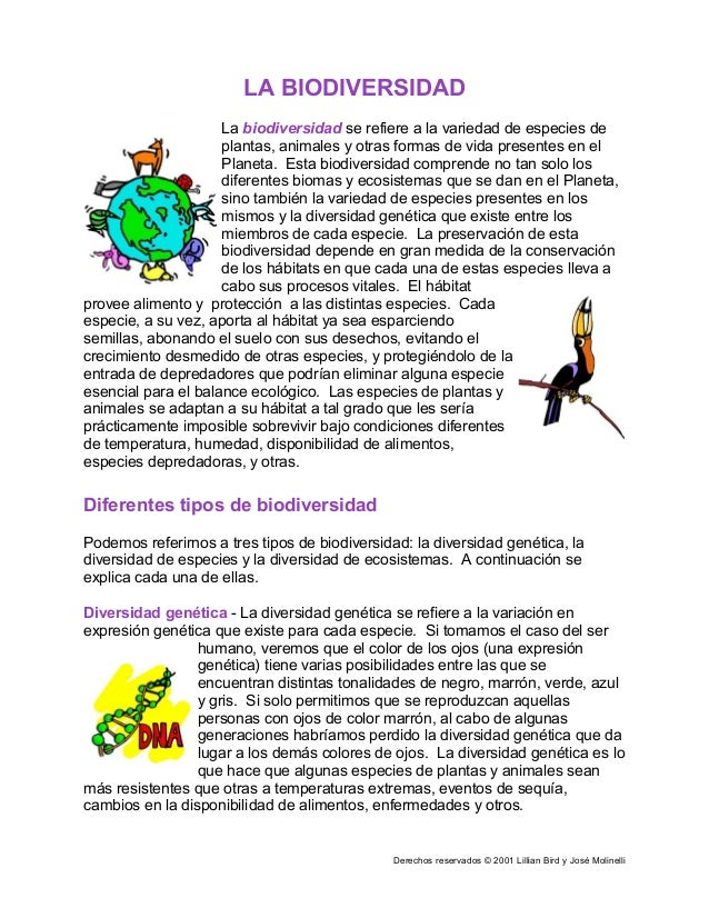 Derechos reservados © 2001 Lillian Bird y José Molinelli LA BIODIVERSIDAD La biodiversidad se refiere a la variedad de esp...