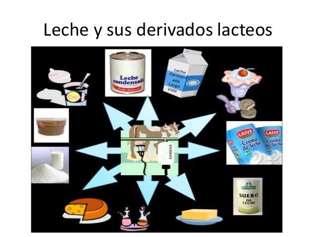 la leche y sus derivado: