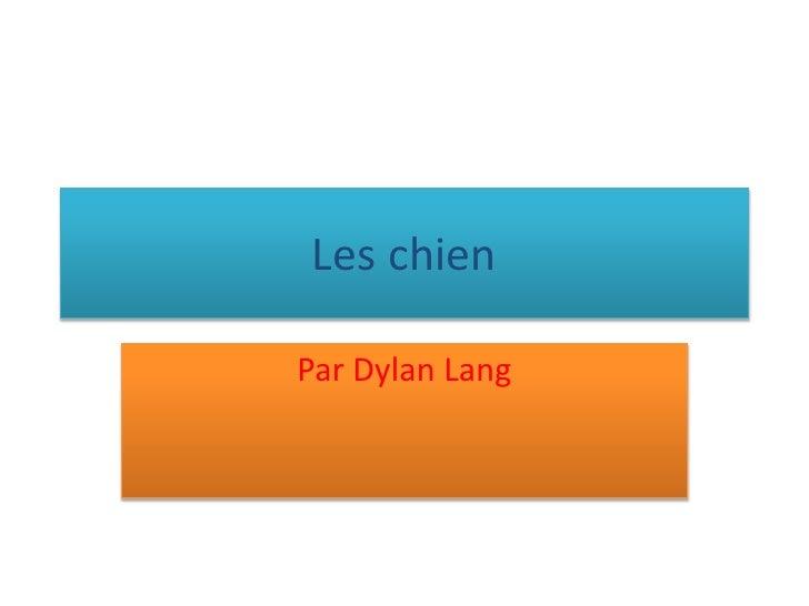 Les chien<br />Par Dylan Lang<br />