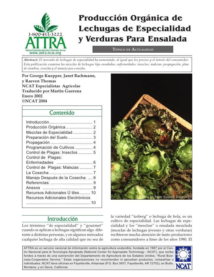 Producción Orgánica de                                                         Lechugas de Especialidad     1-800-411-3222...