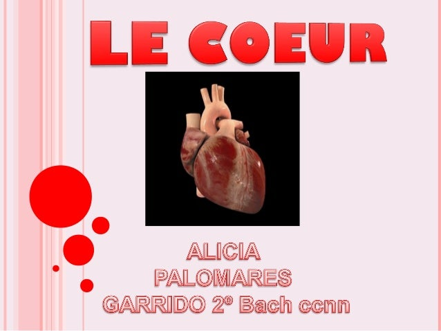 INDEX  LES CARACTERISTIQUES DE NOTRE COEUR  LES COMPOSANTS DU COEUR  MALADIES CARDIO-VASCULAIRES LES PLUS HABITUELLES -...