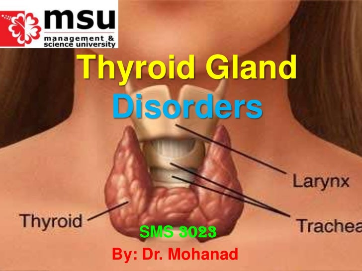 Thyroid Gland Disorders<br />SMS3023<br />By: Dr. Mohanad<br />
