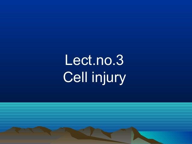Lect.no.3